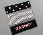 Speelkleed Barney